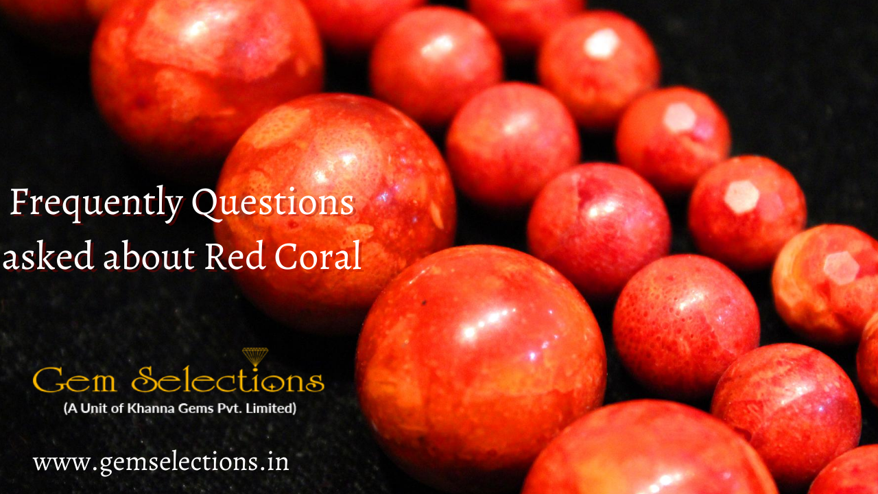Frequently Question asked about Red Coral